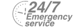 24/7 Emergency Service Pest Control in Southall, UB1, UB2. Call Now! 020 8166 9746